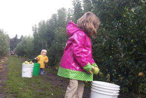 My girls picking apples at Beilke's Family Farm in Brooks.
