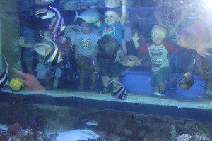AquariumFun