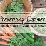 Preserving Summer: A Simple Guide to Canning and Freezing Produce