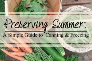 Preserving-summer