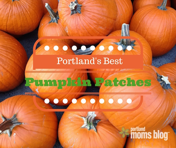 Family Friendly Portland Pumpkin Patches