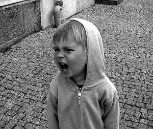 terrible twos toddler life