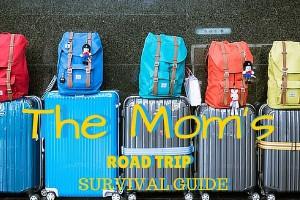 Road Trip Survival (1)