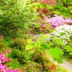 Bring on the May Flowers: Exploring Portland's Blooms