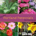 The Best Portland Perennials For Your Garden