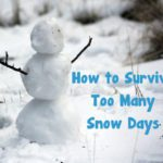 How to Survive Too Many Snow Days
