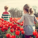8 Ways to Celebrate Spring in Portland