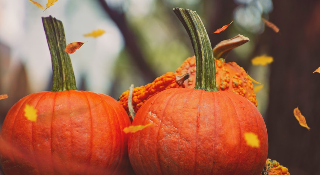 Two pumpkins with falling leaves