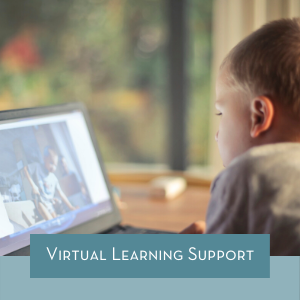 Virtual Learning Support