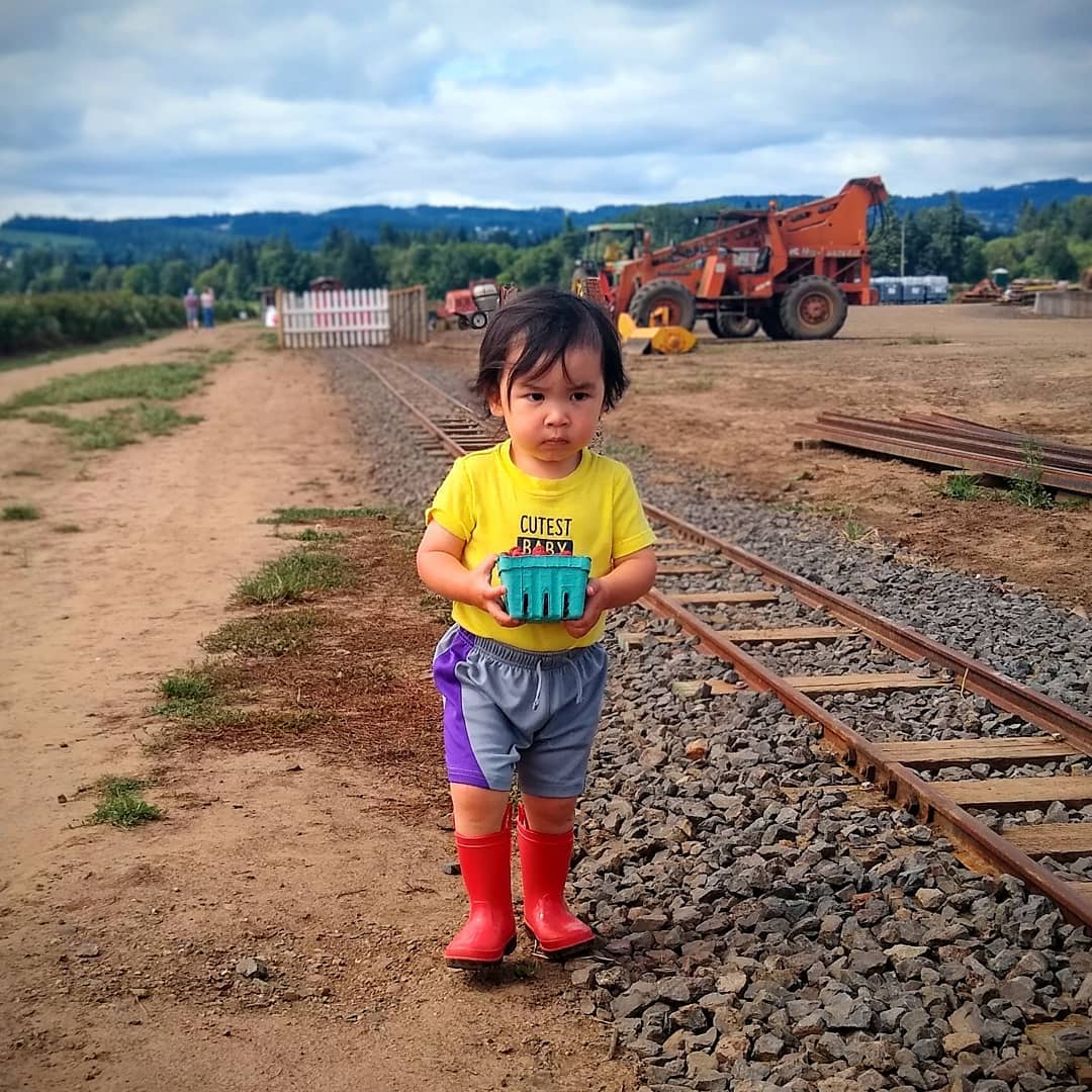 Young boy in a yellow shirt, gray and purple shorts, and red boots walking beside a train track carrying a carton of rasperberries with a farm and farm equipment in the background