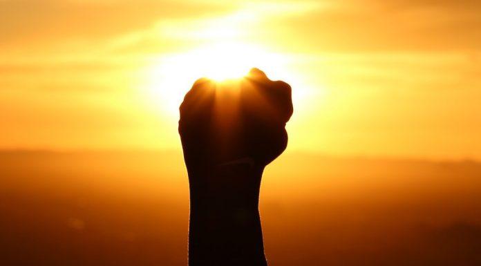 hand raised in the sun